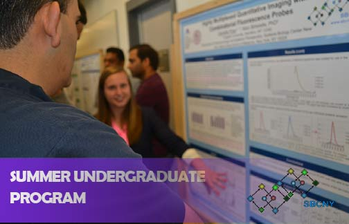 Smmer Undergraduate Program